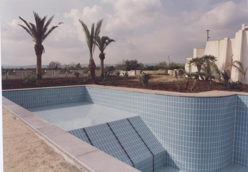 la piscina; the swimming pool